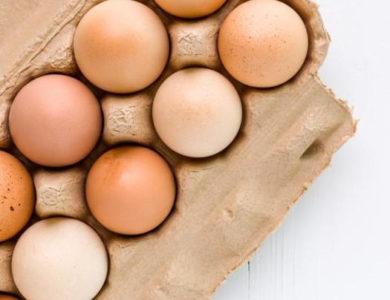 Инкубаторы по количеству яиц